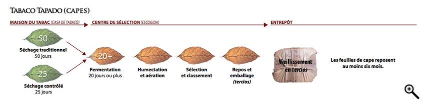 grafico-procesoscapa-fr