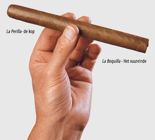 tabaquito_nl